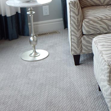 Wear-Dated Carpet Fiber | Highland Park, IL
