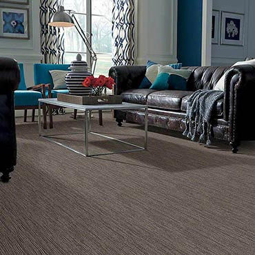 Anso® Nylon Carpet | Highland Park, IL